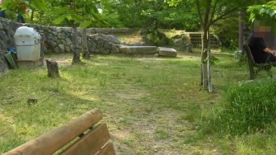 f:id:kabutoyama-tigers:20150531193701j:image