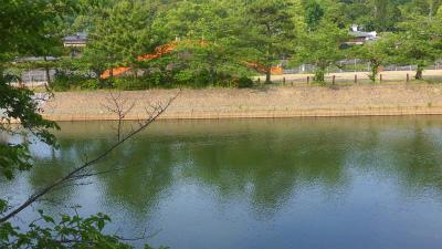 f:id:kabutoyama-tigers:20150531195526j:image