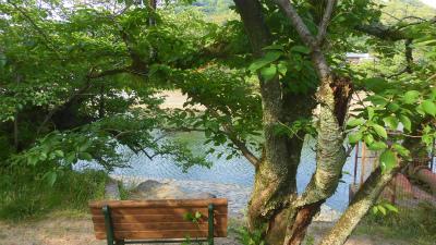 f:id:kabutoyama-tigers:20150531195845j:image