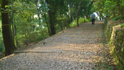 f:id:kabutoyama-tigers:20150601090023j:image