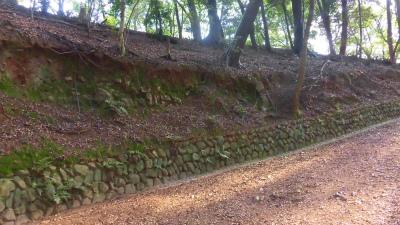 f:id:kabutoyama-tigers:20150601090806j:image