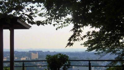 f:id:kabutoyama-tigers:20150601091145j:image
