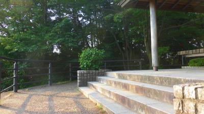 f:id:kabutoyama-tigers:20150601092455j:image