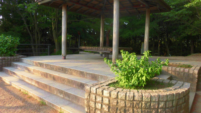 f:id:kabutoyama-tigers:20150601093308j:image