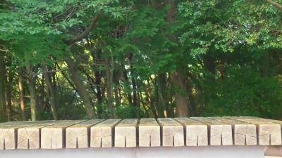 f:id:kabutoyama-tigers:20150601093501j:image