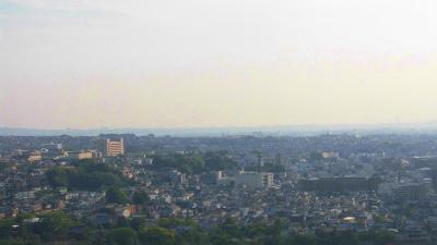 f:id:kabutoyama-tigers:20150601211450j:image