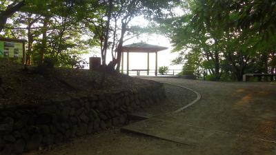 f:id:kabutoyama-tigers:20150601212554j:image