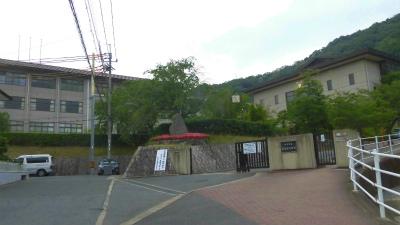 f:id:kabutoyama-tigers:20150604093306j:image