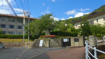 f:id:kabutoyama-tigers:20150607164554j:image