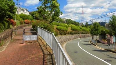 f:id:kabutoyama-tigers:20150607165734j:image