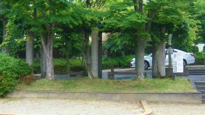 f:id:kabutoyama-tigers:20150613145246j:image