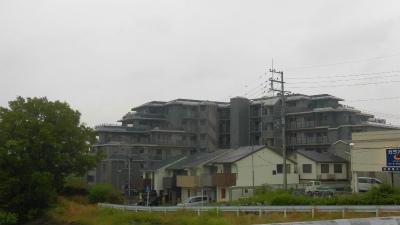 f:id:kabutoyama-tigers:20150614095445j:image