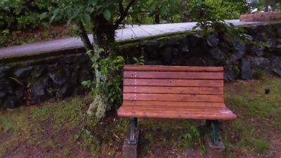 f:id:kabutoyama-tigers:20150627140517j:image