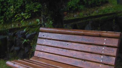 f:id:kabutoyama-tigers:20150627141340j:image