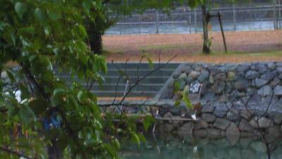 f:id:kabutoyama-tigers:20150627141856j:image