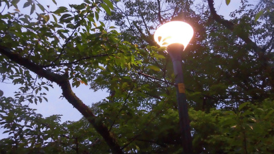 f:id:kabutoyama-tigers:20150627142708j:image