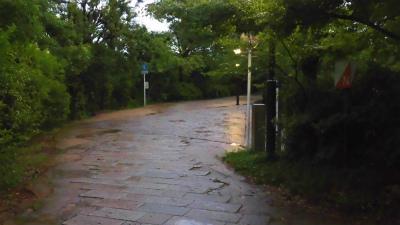 f:id:kabutoyama-tigers:20150627143217j:image