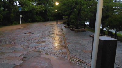 f:id:kabutoyama-tigers:20150627143849j:image