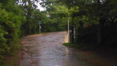 f:id:kabutoyama-tigers:20150627144805j:image