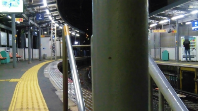 f:id:kabutoyama-tigers:20150627152826j:image