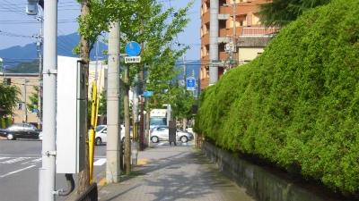 f:id:kabutoyama-tigers:20150705153316j:image