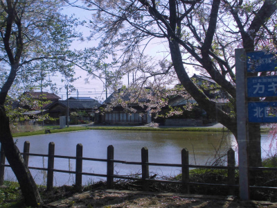 f:id:kabutoyama-tigers:20151107154557j:image