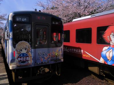 f:id:kabutoyama-tigers:20151107163019j:image
