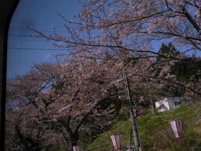 f:id:kabutoyama-tigers:20151107163022j:image