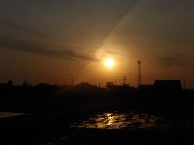 f:id:kabutoyama-tigers:20151107191330j:image