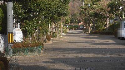 f:id:kabutoyama-tigers:20160123102344j:image