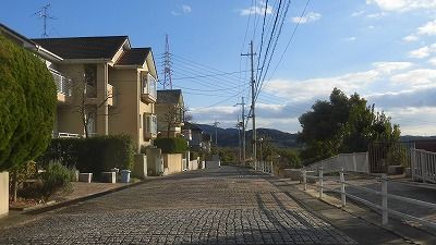 f:id:kabutoyama-tigers:20160123102853j:image