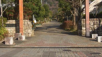 f:id:kabutoyama-tigers:20160123103303j:image