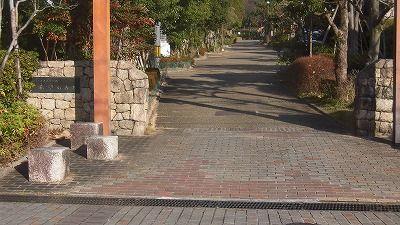 f:id:kabutoyama-tigers:20160123103554j:image