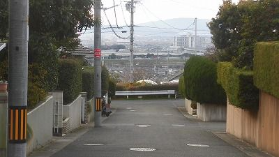 f:id:kabutoyama-tigers:20160123110325j:image