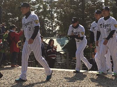 f:id:kabutoyama-tigers:20160401175935j:image