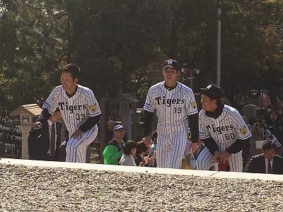 f:id:kabutoyama-tigers:20160404184725j:image