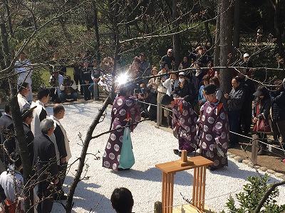 f:id:kabutoyama-tigers:20160404190404j:image
