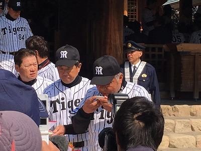 f:id:kabutoyama-tigers:20160404193909j:image