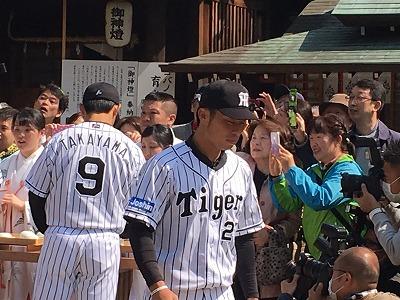 f:id:kabutoyama-tigers:20160404200324j:image