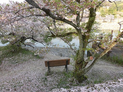 f:id:kabutoyama-tigers:20160413182621j:image