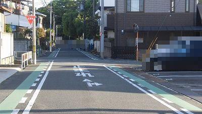 f:id:kabutoyama-tigers:20160606190717j:image