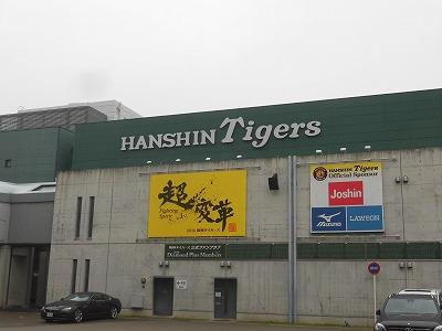 f:id:kabutoyama-tigers:20160607180709j:image