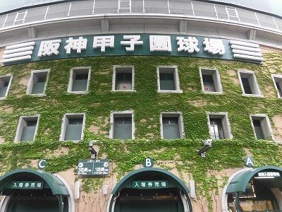 f:id:kabutoyama-tigers:20160607180712j:image