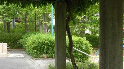 f:id:kabutoyama-tigers:20160617133808j:image