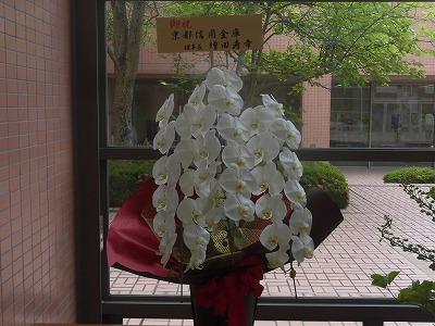 f:id:kabutoyama-tigers:20160618172023j:image