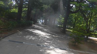 f:id:kabutoyama-tigers:20160708222623j:image