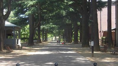 f:id:kabutoyama-tigers:20160708223424j:image