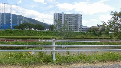 f:id:kabutoyama-tigers:20160709064610j:image