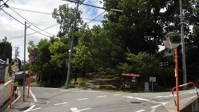 f:id:kabutoyama-tigers:20160717171343j:image