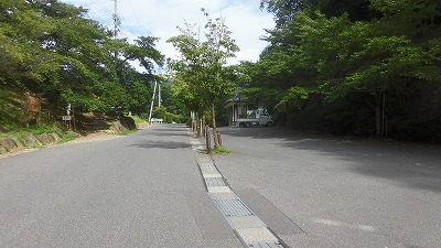 f:id:kabutoyama-tigers:20160717173459j:image